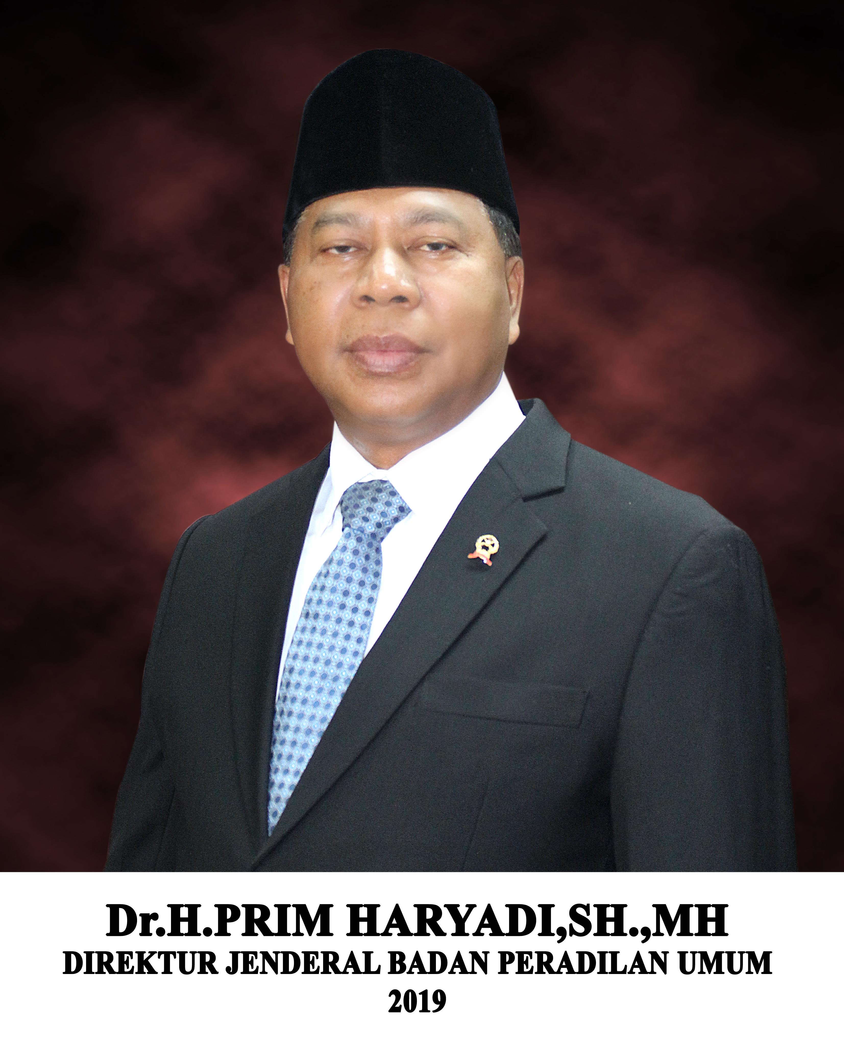 Foto Direktur Jenderal Badan Peradilan Umum, Dr. Prim Haryadi, S.H., M.H.